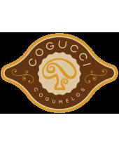 Cogucci Cogumelos - Unidade Cravinhos - SP